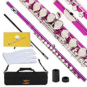 Glory Closed Hole C Flute with Case, Tuning Rod and Cloth, Joint Grease, and Gloves-Pink Color
