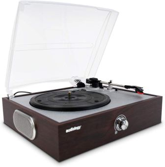 Audiology Wooden Turntable