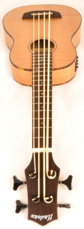 Top 15 Best Bass Ukuleles in 2019