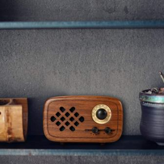Top 15 Best Bluetooth Speakers with Radio in 2019