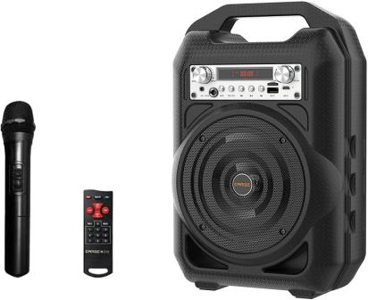 EARISE T35 PA Speaker System with Microphone