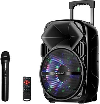 EARISE V30 PA Speaker System with Microphone