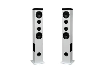Floor Standing Speakers