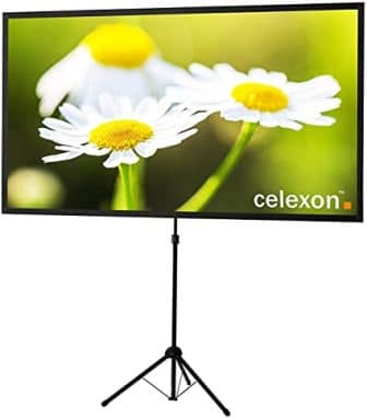 Celexon 80-Inch Projector Screen with Stand